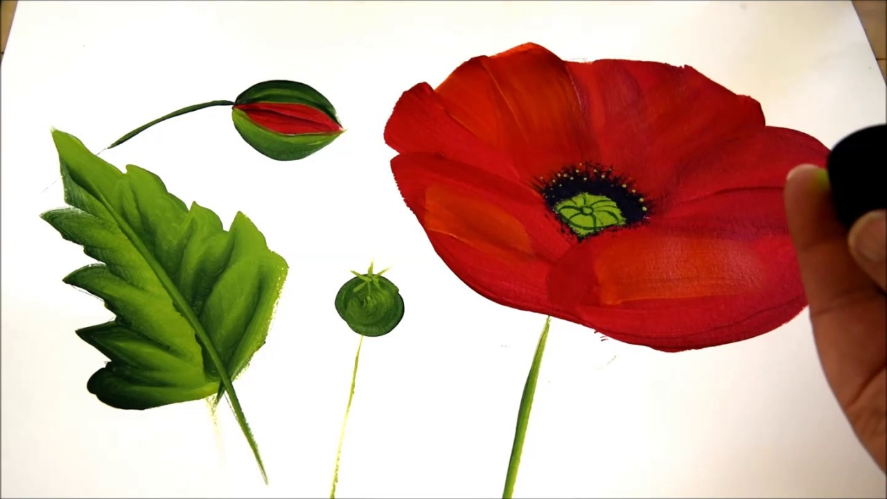 How To Paint A Large Red Poppy Easy And Fun Youtube
