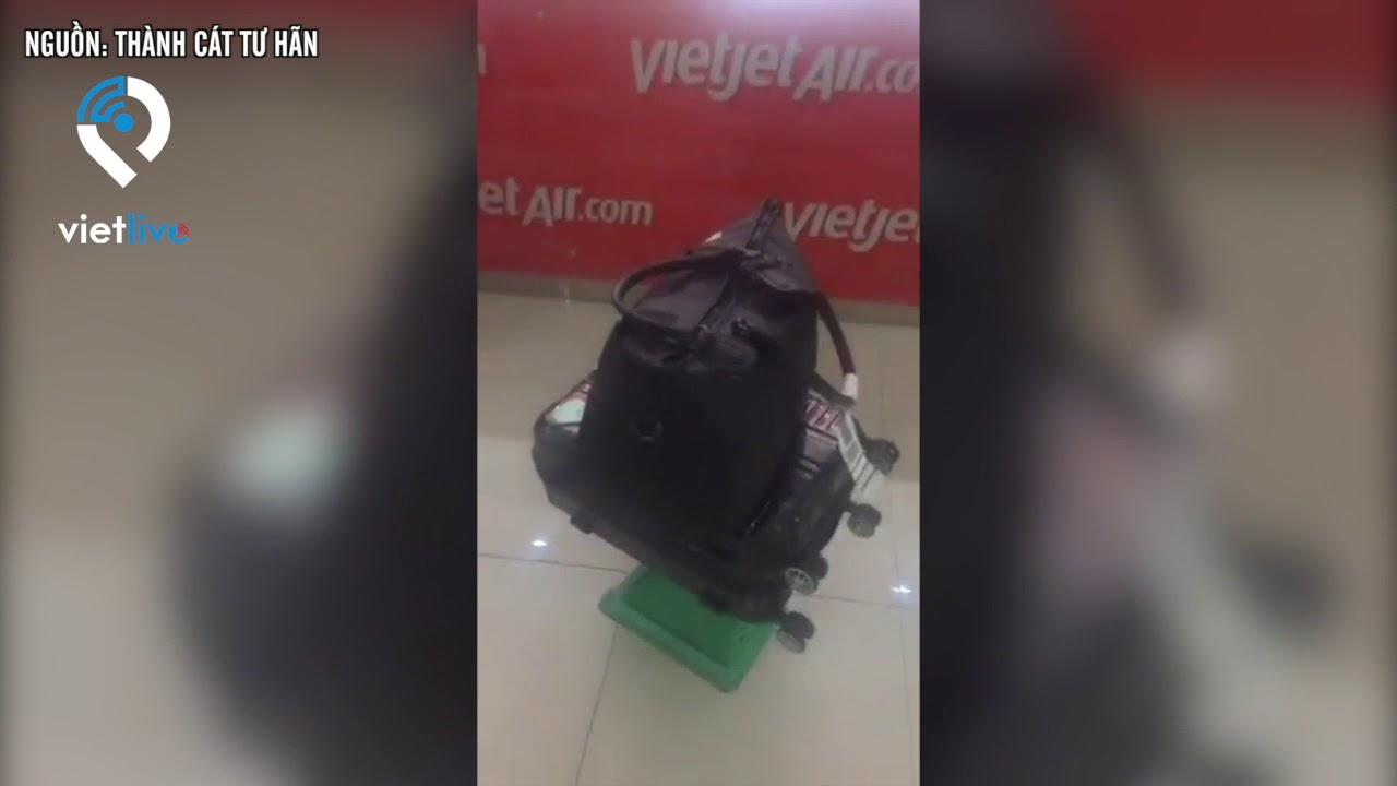 Vietjet: hành lý bị rạch chỉ đền 200 ngàn