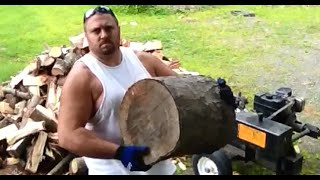🔥 Diy Firewood Splitting With A Gas Powered Hydraulic Wood Splitter