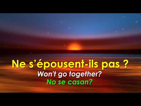 Ne Me Quitte Pas - Jacques Brel (English And Spanish Subtitles)