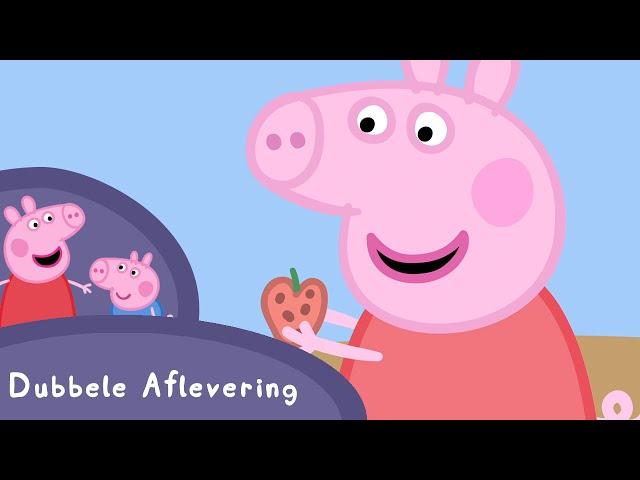 Peppa Pig Nederlands Compilatie Nieuwe Afleveringen | Papa is zijn bril kwijt | Tekenfilm