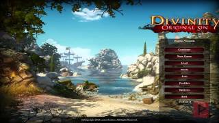how To Play Divinity: Original Sin LAN Online Using Tunngle Tutorial