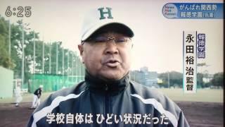 2017 センバツ甲子園 報徳学園 戦力分析