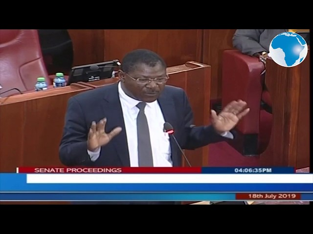 Wetangula: This country does not belong to Senate, National Assembly majority leaders