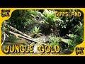 Gippsland Again... ⛏ Gold Prospecting Australia