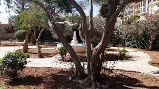 The Westin Dragonara Resort Malta - Sunken Garden