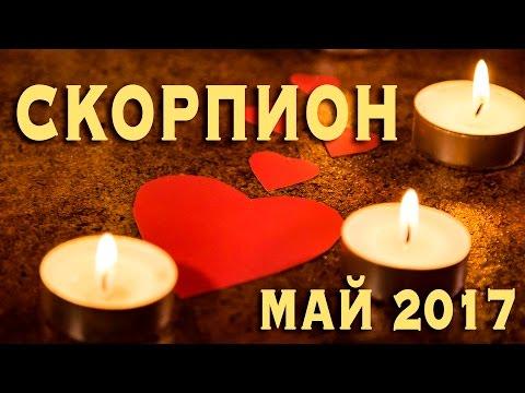 Любовный гороскоп На сегодня для знака Скорпион на
