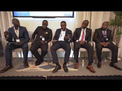 CDIS 2019: Business and Investing in DRC