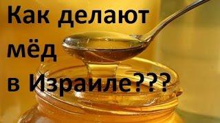 Мед в Израиле. Как это сделано?
