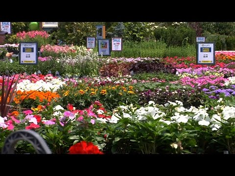 Horticulture Industry is Largest Sector of NJ Agriculture