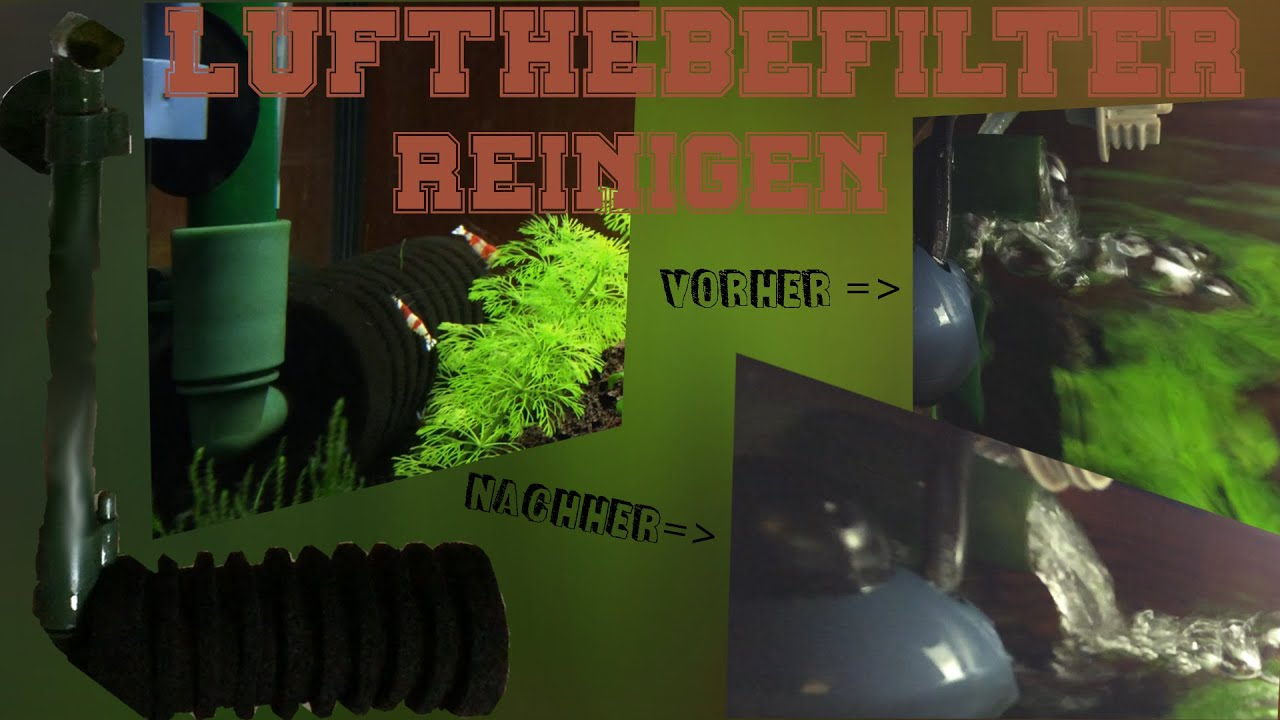 filter s ubern lufthebefilter im garnelenaquarium reinigen wie geht das wie oft youtube. Black Bedroom Furniture Sets. Home Design Ideas