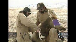History of the Natl Wildlife Refuge System - 2005 U.S. Forest Service Film