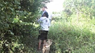 Soy Bean Farming, Cattle Ranching Encroach On Brazilian Tribe