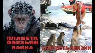 Планета обезьян: Война за воду