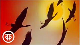 В мире животных. Природа Башкирии. Эфир 18.09.1982 г. | В мире животных