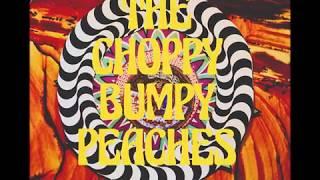 DARJEELING - The Choppy Bumpy Peaches (Official Music Video)