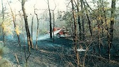 Monroe Twp, NJ (Middlesex) Major Forest Fire 1985