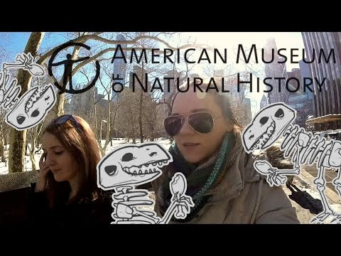 Vlog USA #13 : American Museum of Natural History