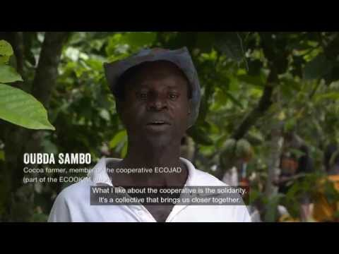 Life on a Fairtrade Cocoa Farm