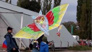 ŚWIĘTO LATAWCA PŁOCK 2012 - kite festival