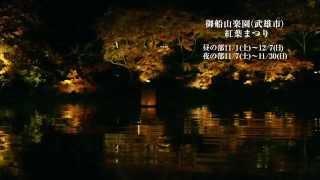 2014 紅葉まつり 開催中 日本最大級の紅葉ライトアップも開催