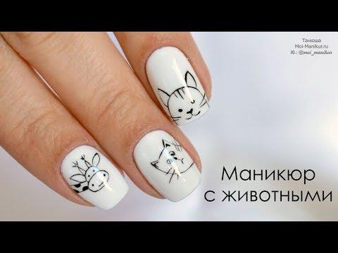 Рисунок животных на ногтях