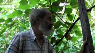 Παν. Μανίκης Σεμινάριο Φυσικής καλλιέργειας Μέρος 1ο