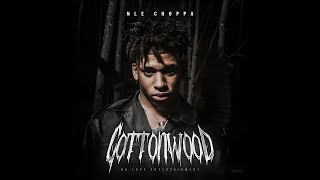NLE Choppa - Cruze feat. Meek Mill ( Audio)
