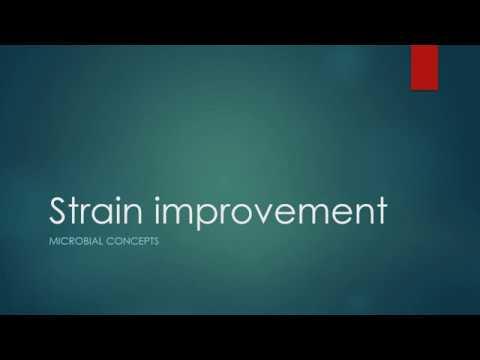 strain-improvement