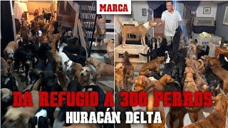 Huracán en Cancún: un joven da refugio a 300 perros en su casa I MARCA