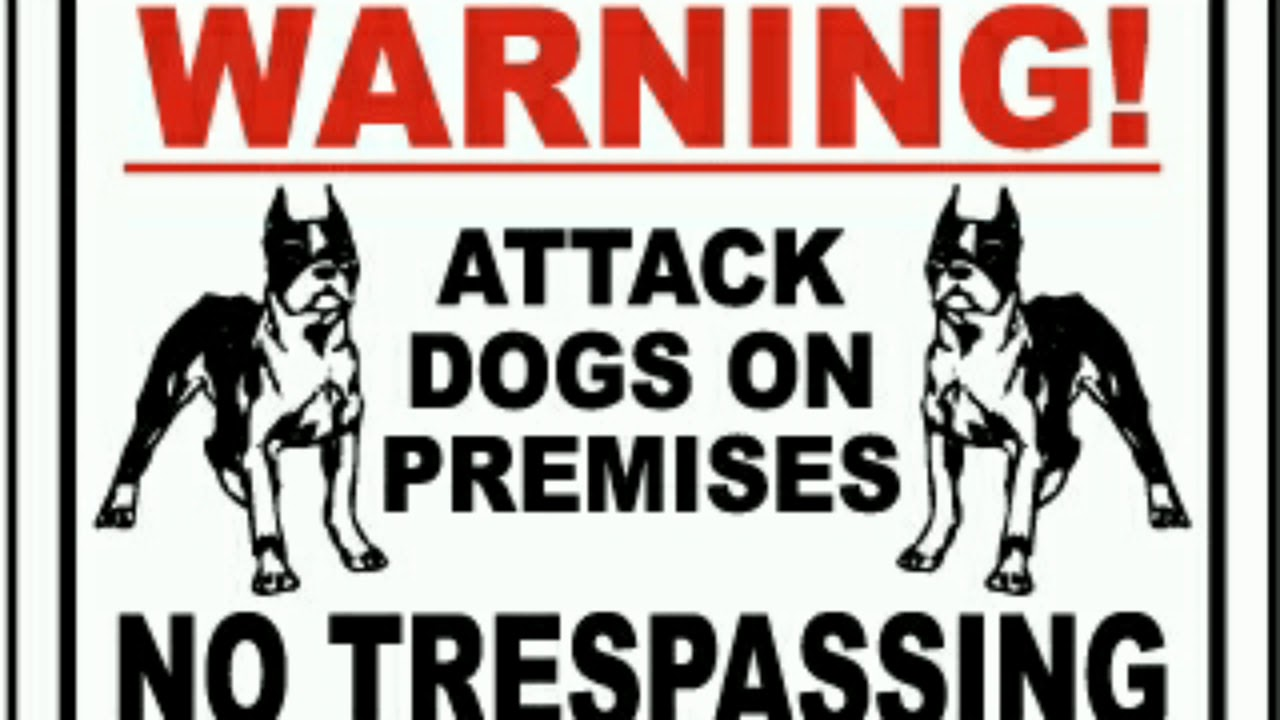 Beware Of Dog Signs That Will Make You Laugh Youtube