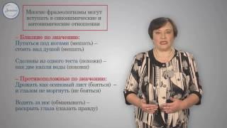 Уроки русского Источники фразеологизмов