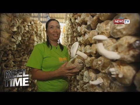Reel Time: Iba't ibang mga klase ng kabute sa Pilipinas
