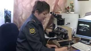 Новости. Выпуск от 10 ноября. Тагил-ТВ.(, 2011-11-11T05:27:05.000Z)