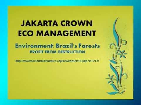 Jakarta Crown Eco Management| Environment: Brazil's Forests - Profit from Destruction