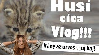 HUSI CICA VLOG - IRÁNY AZ ORVOS!! :D