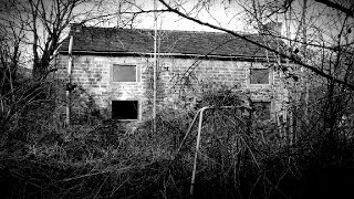 The Abandoned Cottage In The Woods   This Place Was Creepy