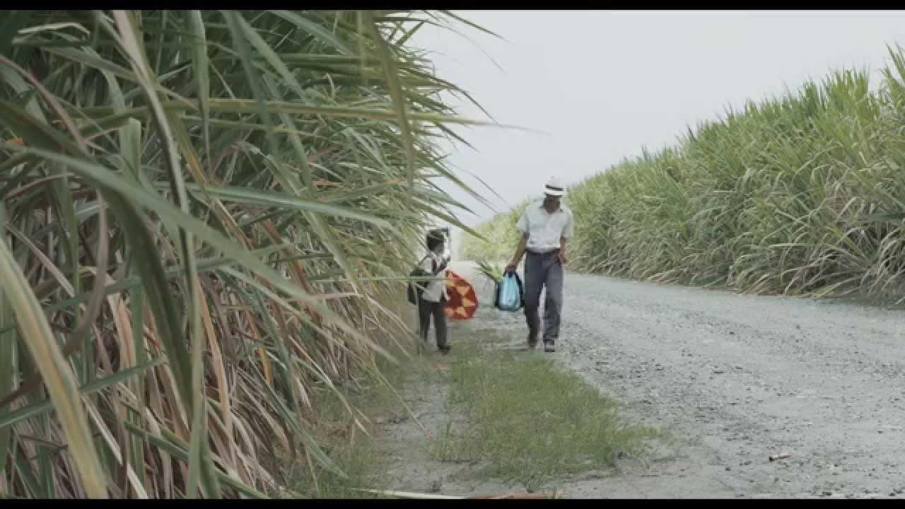 画像: Trailer oficial - LA TIERRA Y LA SOMBRA de César Acevedo - ESTRENO EL 23 DE JULIO EN CINES youtu.be