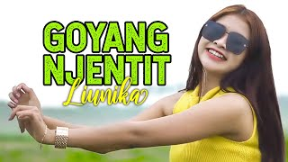 Minggir Awas Pliket | GOYANG NJENTIT - Liunika | Remix Version (Official Music Video)