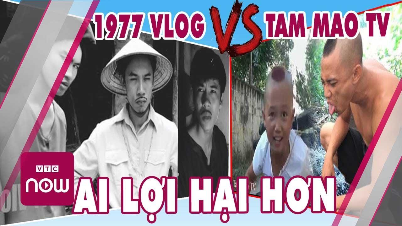 1977 vlog cậu vàng vs anh em tam mao ai lợi hại hơn ai | Cuộc sống 24h Việt Nam
