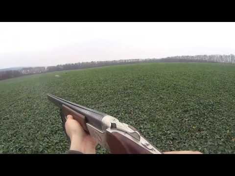 Охота на зайца осенью 2015, ТОЗ-34