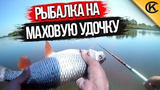Рыбалка на маховую удочку на реке. Ловля белой рыбы на ракушку.