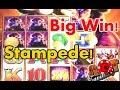 **BIG WIN** Jackpot at The Reservation?! $$ Buffalo Stampede Slot | SlotTraveler