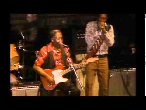 Muddy Waters & Rory Gallagher [ 1 ] ~ Tribute ( Electric Chicago Blues 1972)