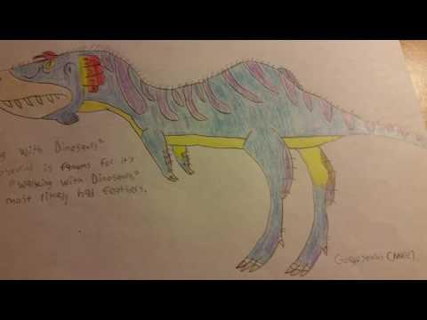 The Tyrannosaurid Pack I: Tyrannosaurus Rex, Nanotyrannus, Gorgosaurus, and Yutyrannus