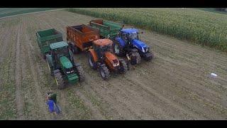 ! Kukurydza w Kromolicach 2015 !
