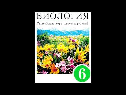 § 23 Размножение голосеменных растений