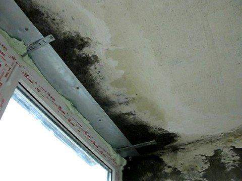 протекает стена в квартире куда обращаться