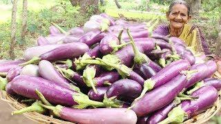 Spicy Brinjal Curry || Tasty Brinjal Recipe By Grandma || Myna Street Food