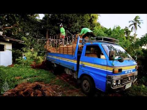 Erozyona Hindistan Cevizi ile Doğal Çözümler